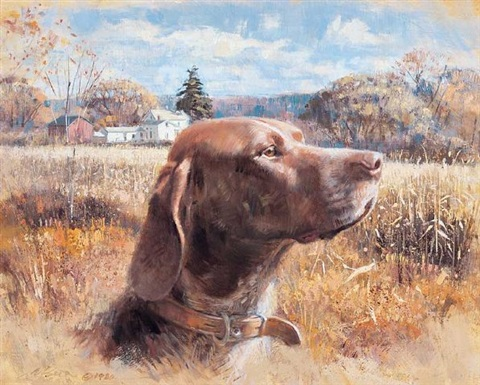 german shorthair pointer by robert kennedy abbett