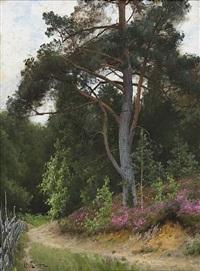 skogsparti med gärdesgård och vandringsstig by arvid mauritz lindström