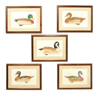 mallard hen decoy (+ 4 others; 5 works) by arthur nevin