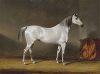 a favourite racehorse by c.d. langley