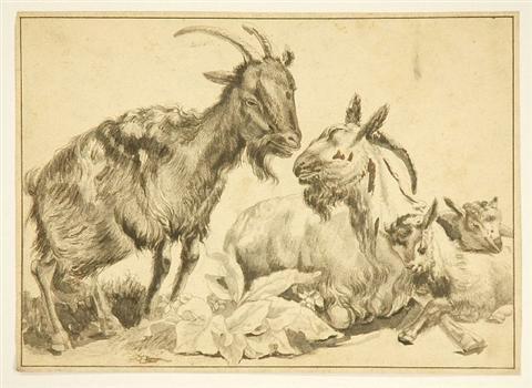 goats study by jean jacques de boissieu