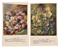 violets and clover (+ cross-leaved heath and butterflies; 2 works) by albert durer lucas
