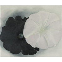 black petunia and white morning glory i by georgia o'keeffe