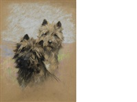 cairn terriers by arthur wardle