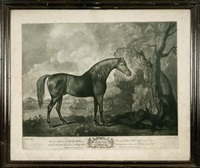 brown horse mask by george stubbs