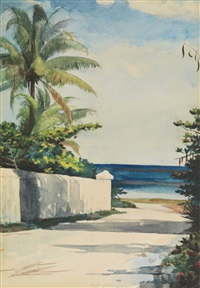 road in nassau (no. 1 nassau street) by winslow homer