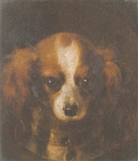 head of a king charles spaniel by henry liverseege