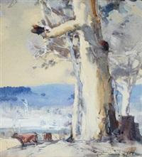 gum trees with grazing cows by harold brocklebank herbert