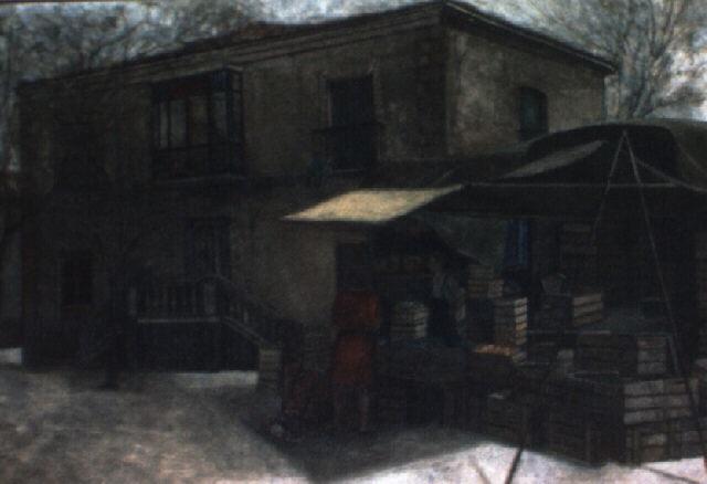 torija by amalia avia
