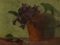 african violets by mary augusta hiester reid