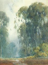 eucalyptus trees by percy gray