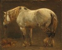 a horse by otto bache