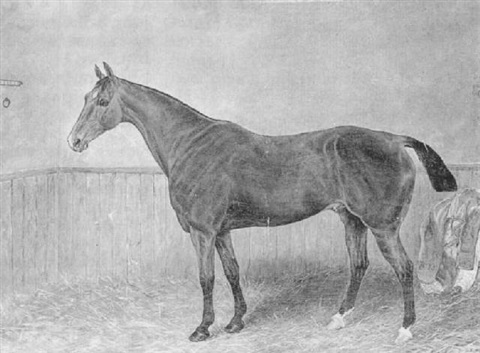fireking a bay racehorse in a stable by alfred moginie bryant