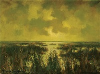 marshlands at dusk by toon koster