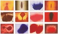 twelve etchings (set of 12) by anish kapoor