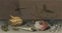 a tulip, a carnation, spray of forget-me-nots, with a shell, a lizard and a grasshopper on a ledge, a dragonfly in flight by balthasar van der ast