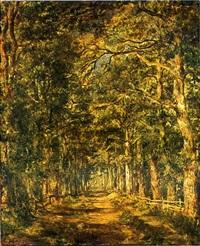 chemin dans les bois au souliers by charles leroux