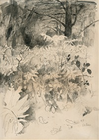 forest scene from st. ives by helene sofia schjerfbeck