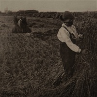 shocking corn (norfolk), plate viii (from pictures of east anglian life) by peter henry emerson