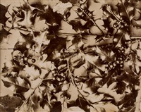 holly; hortensia, 1860s by charles aubry