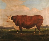 the prize bull by h.j. quintin