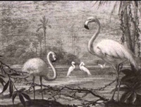 cranes and flamingoes (2 works) by alphonse t. toran
