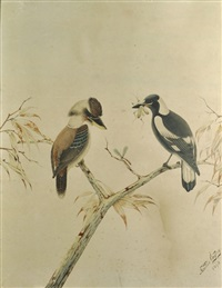 magpie with grasshopper & kookaburra stalking dragonfly by neville henry peniston cayley