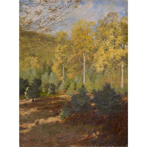 forest interior, autumn by ben foster