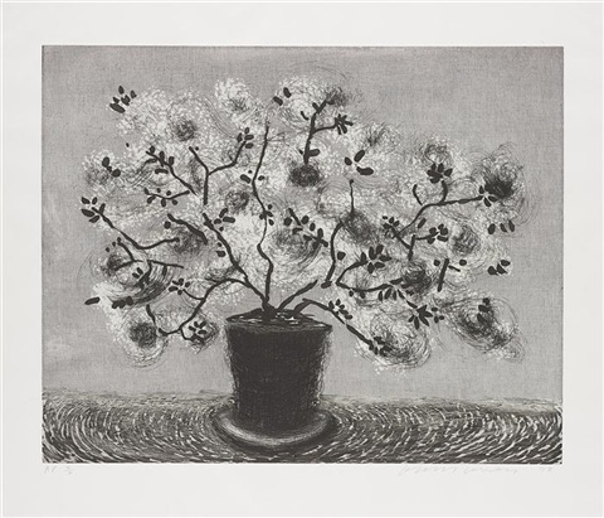black wire plant by david hockney