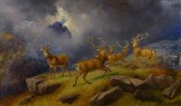 red deer in the highlands by robert henry roe