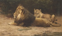 lion and lioness at rest by george denholm armour
