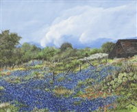 spring magic in texas by dimple crow