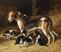 a foxhound bitch feeding her pups by john emms