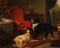 defending the best spot by henriette ronner-knip