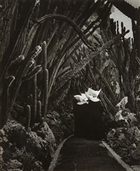 exotic garden in monaco by brassaï