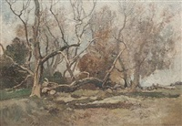 an autumnal copse by oliver hall