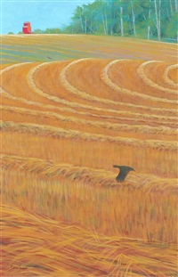 crow flight by chris macclure