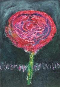 la rosa by maurilio colombini