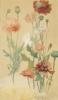 poppies by albert edelfelt