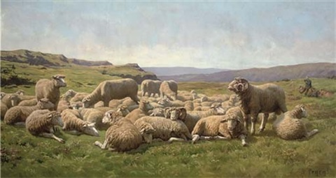 sheep in a meadow by rené peyrol
