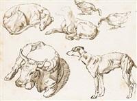 etudes de trois lévriers, une vache et deux oies by sinibaldo scorza
