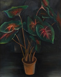 filodendron by georges (karpeles) kars