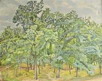 lesní pěšina by svatopluk machal