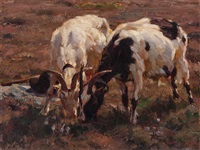grazing goats by julius paul junghanns