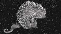 porcupine (voom portraits) by robert wilson