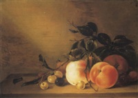 peaches, an apple, an apricot, plums and cherries on a ledge with a wasp by jan matham