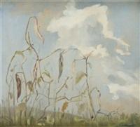 landscape by janusz maria brzeski