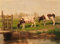 two cows by the edge of a ditch by fedor van kregten