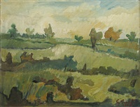 field landscape by george bucataru