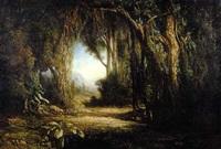 forêt dans l'intérieur de l'ile des comores by charles merme